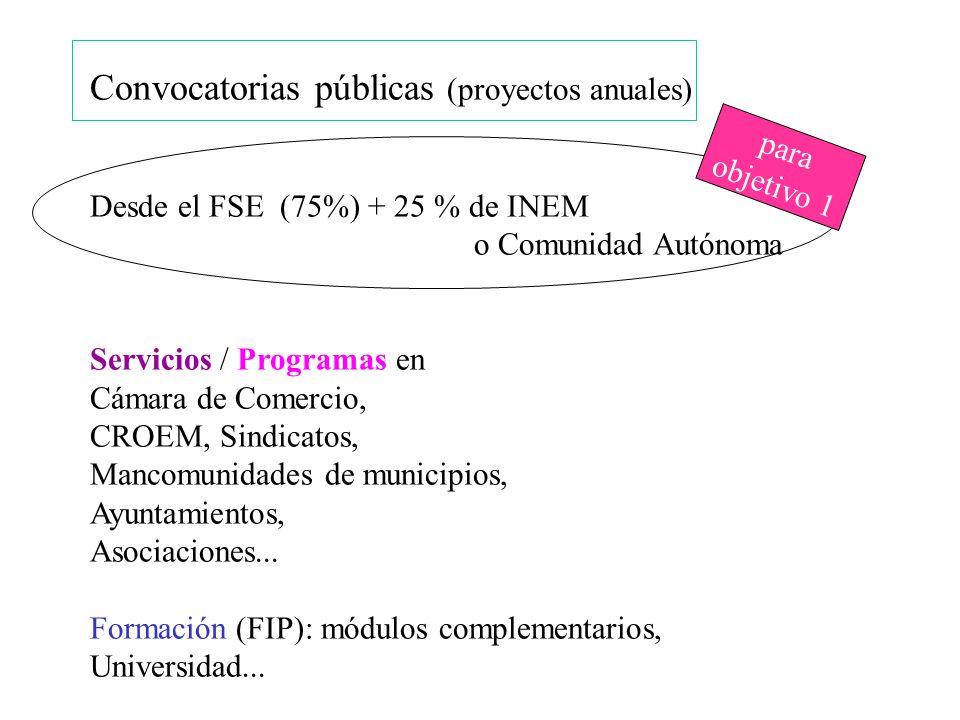 Convocatorias públicas (proyectos anuales) Desde el FSE (75%) + 25 % de INEM o Comunidad Autónoma Servicios / Programas en Cámara de Comercio, CROEM,