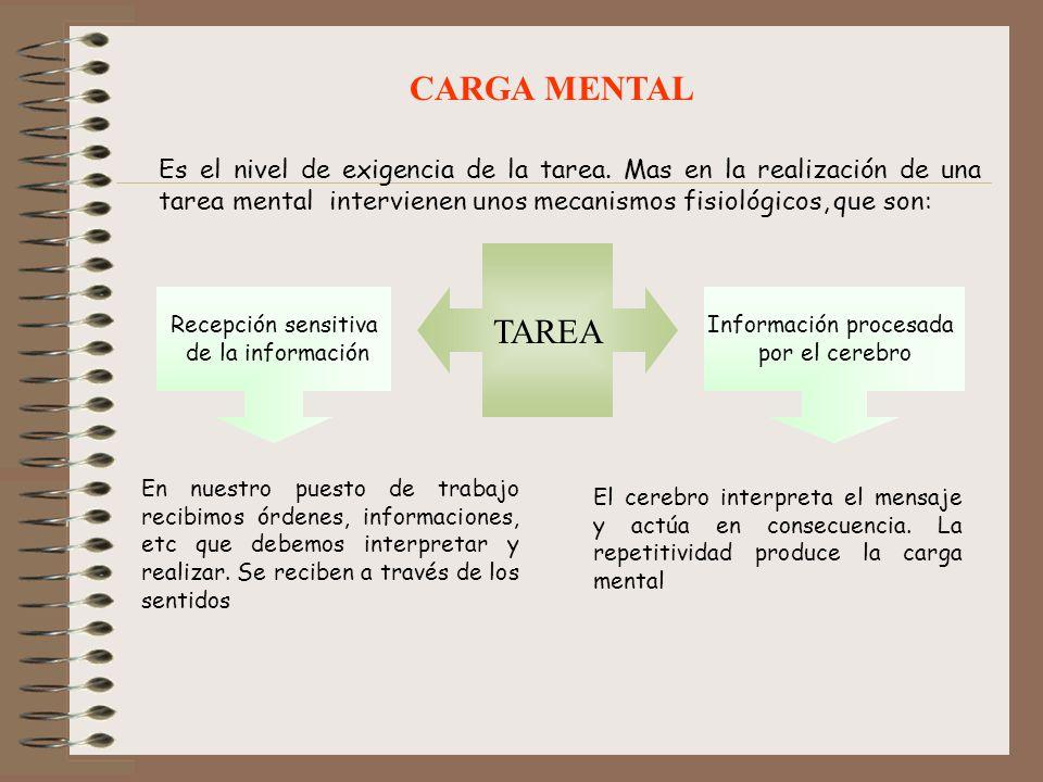 CARGA MENTAL Es el nivel de exigencia de la tarea. Mas en la realización de una tarea mental intervienen unos mecanismos fisiológicos, que son: TAREA