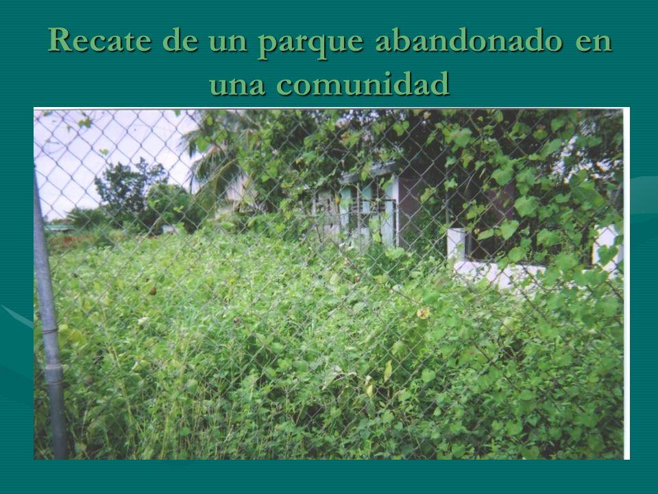 Recate de un parque abandonado en una comunidad