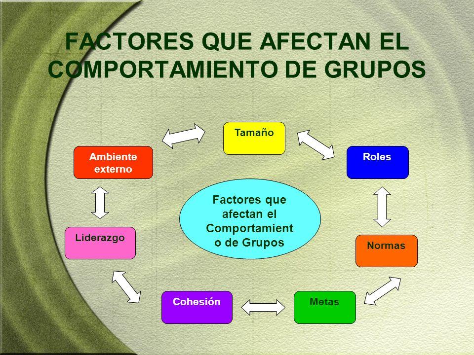 FACTORES QUE AFECTAN EL COMPORTAMIENTO DE GRUPOS Factores que afectan el Comportamient o de Grupos Tamaño RolesAmbiente externo Normas MetasCohesión L