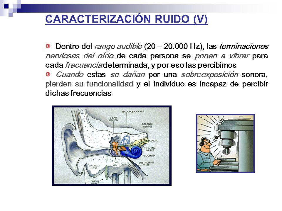 CARACTERIZACIÓN RUIDO (V) Dentro del rango audible (20 – 20.000 Hz), las terminaciones nerviosas del oído de cada persona se ponen a vibrar para cada