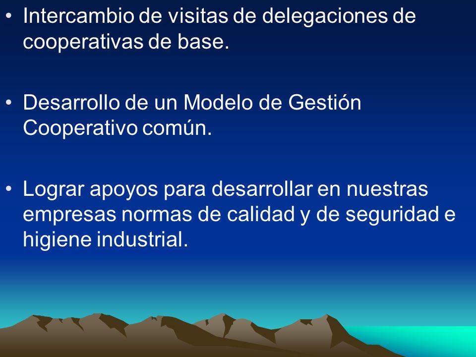 Intercambio de visitas de delegaciones de cooperativas de base. Desarrollo de un Modelo de Gestión Cooperativo común. Lograr apoyos para desarrollar e