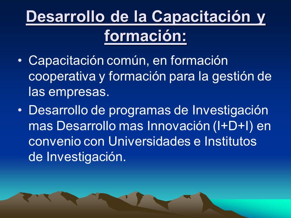 Desarrollo de la Capacitación y formación: Capacitación común, en formación cooperativa y formación para la gestión de las empresas. Desarrollo de pro