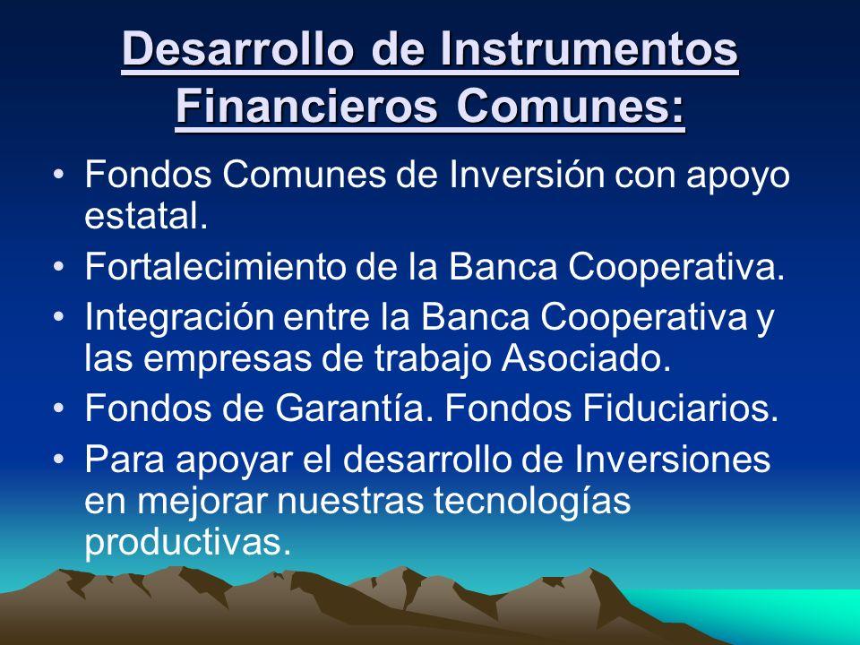 Desarrollo de Instrumentos Financieros Comunes: Fondos Comunes de Inversión con apoyo estatal. Fortalecimiento de la Banca Cooperativa. Integración en