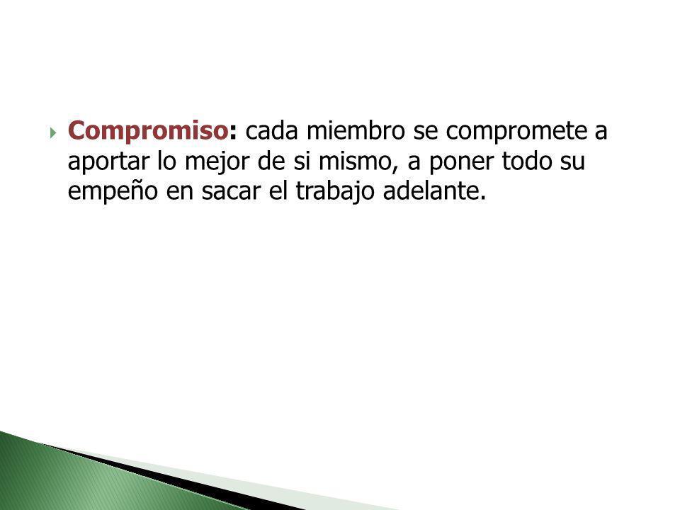 Compromiso: cada miembro se compromete a aportar lo mejor de si mismo, a poner todo su empeño en sacar el trabajo adelante.
