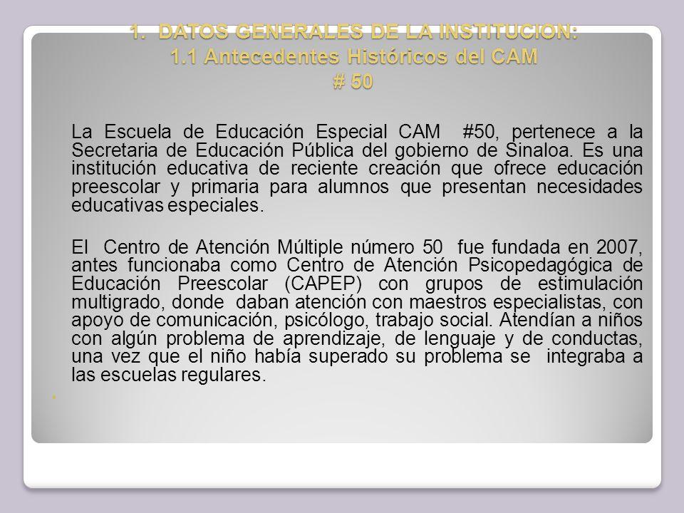 8.Observaciones generales de la práctica profesional de trabajo social CAM No.