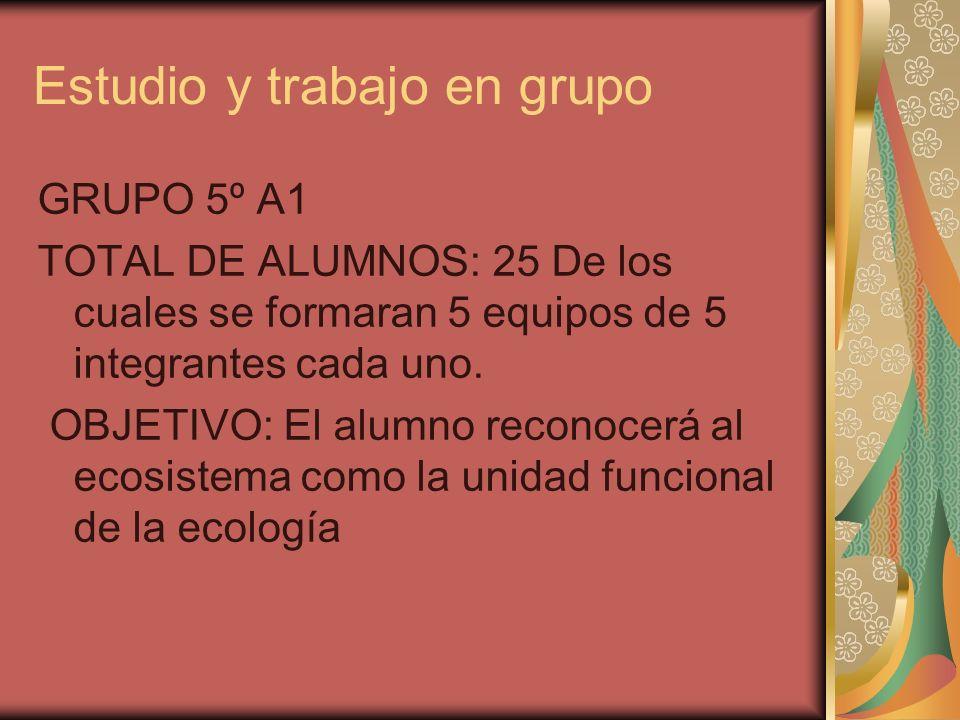 Estudio y trabajo en grupo GRUPO 5º A1 TOTAL DE ALUMNOS: 25 De los cuales se formaran 5 equipos de 5 integrantes cada uno. OBJETIVO: El alumno reconoc