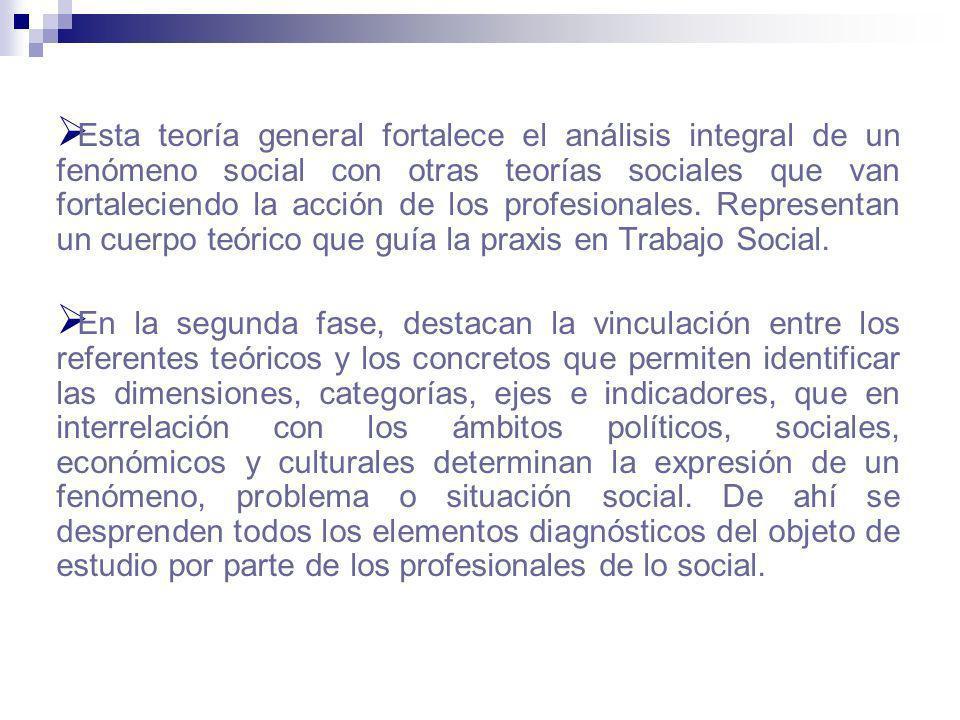 Esta teoría general fortalece el análisis integral de un fenómeno social con otras teorías sociales que van fortaleciendo la acción de los profesional