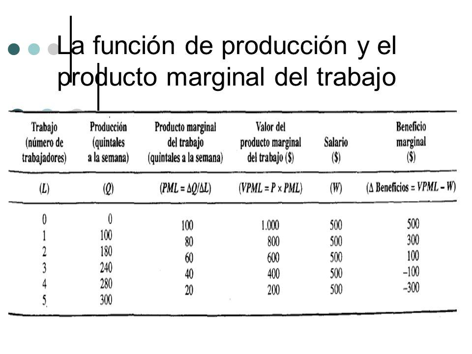 La función de producción y el producto marginal del trabajo