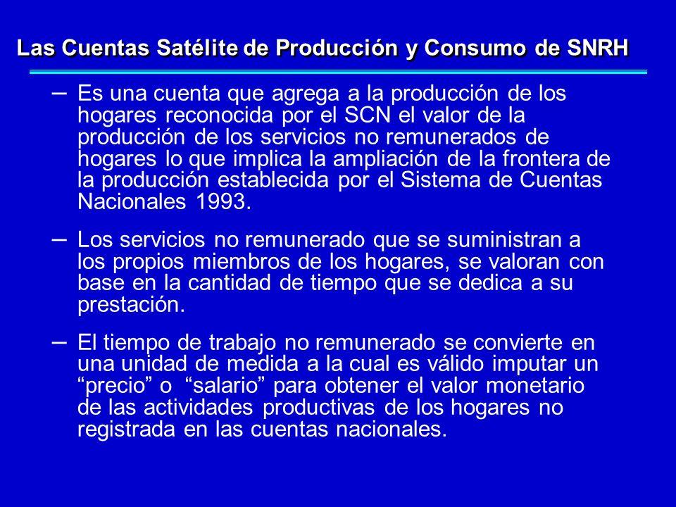 – Es una cuenta que agrega a la producción de los hogares reconocida por el SCN el valor de la producción de los servicios no remunerados de hogares l