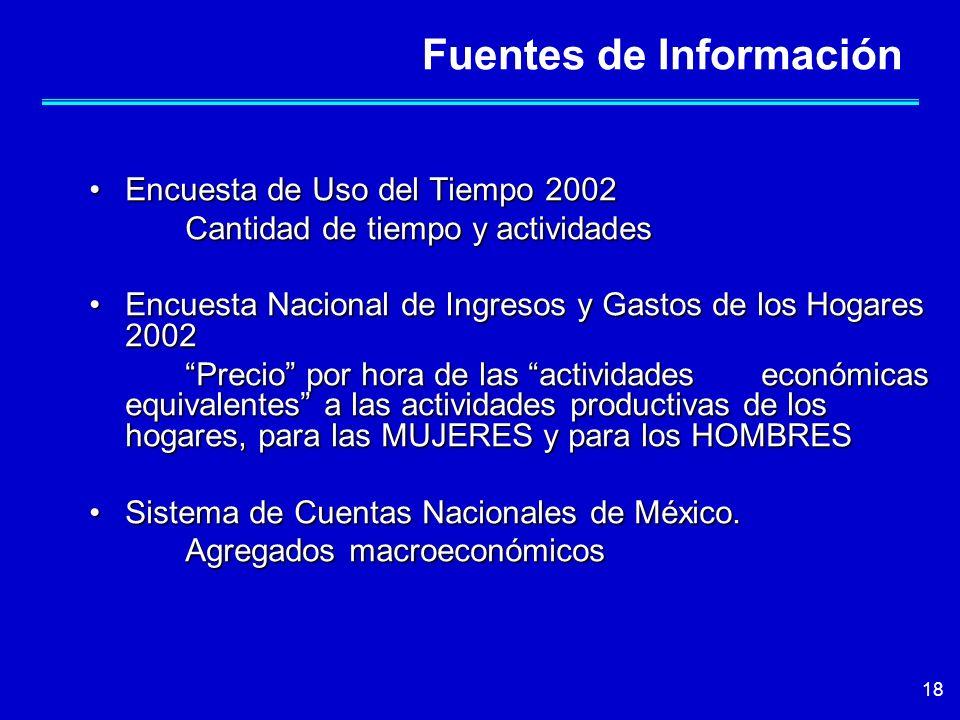 18 Fuentes de Información Encuesta de Uso del Tiempo 2002Encuesta de Uso del Tiempo 2002 Cantidad de tiempo y actividades Encuesta Nacional de Ingreso