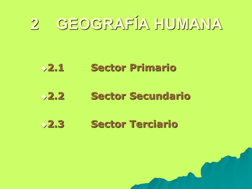 2 GEOGRAFÍA HUMANA 2.1 Sector Primario 2.1 Sector Primario 2.2 Sector Secundario 2.2 Sector Secundario 2.3 Sector Terciario 2.3 Sector Terciario