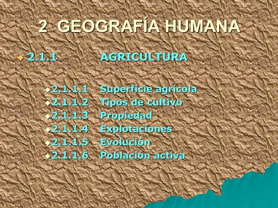 2 GEOGRAFÍA HUMANA 2.1.1 AGRICULTURA 2.1.1 AGRICULTURA 2.1.1.1 Superficie agrícola 2.1.1.1 Superficie agrícola 2.1.1.2 Tipos de cultivo 2.1.1.2 Tipos