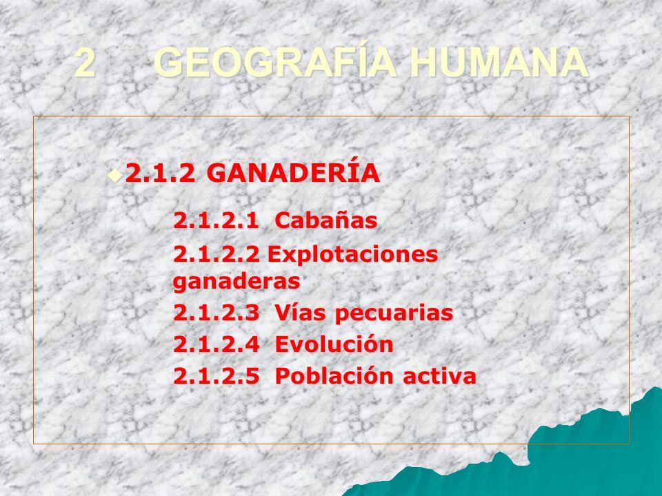 2 GEOGRAFÍA HUMANA 2.1.2 GANADERÍA 2.1.2 GANADERÍA 2.1.2.1 Cabañas 2.1.2.2 Explotaciones ganaderas 2.1.2.3 Vías pecuarias 2.1.2.4 Evolución 2.1.2.5 Po