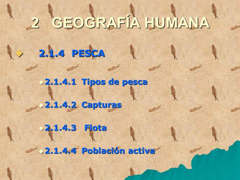2 GEOGRAFÍA HUMANA 2.1.4 PESCA 2.1.4 PESCA 2.1.4.1 Tipos de pesca 2.1.4.1 Tipos de pesca 2.1.4.2 Capturas 2.1.4.2 Capturas 2.1.4.3 Flota 2.1.4.3 Flota