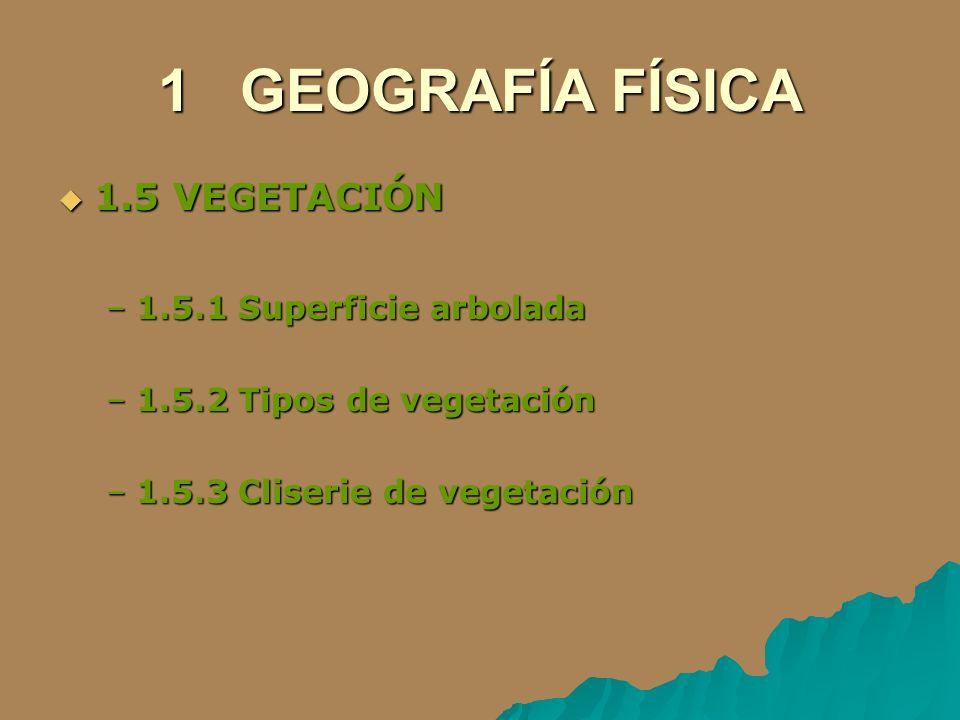 1 GEOGRAFÍA FÍSICA 1.5 VEGETACIÓN 1.5 VEGETACIÓN –1.5.1 Superficie arbolada –1.5.2 Tipos de vegetación –1.5.3 Cliserie de vegetación