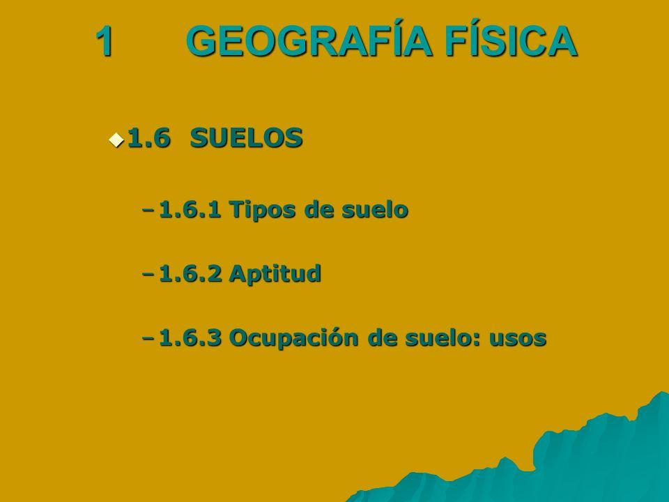 1 GEOGRAFÍA FÍSICA 1.6 SUELOS 1.6 SUELOS –1.6.1 Tipos de suelo –1.6.2 Aptitud –1.6.3 Ocupación de suelo: usos