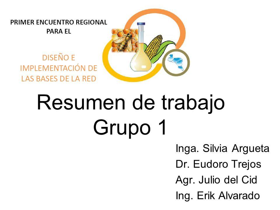 Resumen de trabajo Grupo 1 Inga. Silvia Argueta Dr. Eudoro Trejos Agr. Julio del Cid Ing. Erik Alvarado