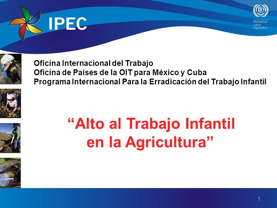 Oficina Internacional del Trabajo Oficina de Países de la OIT para México y Cuba Programa Internacional Para la Erradicación del Trabajo Infantil Alto