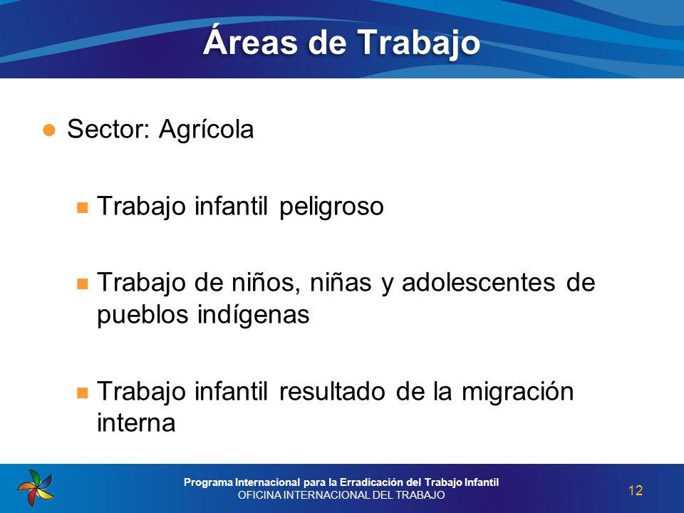 Áreas de Trabajo Sector: Agrícola Trabajo infantil peligroso Trabajo de niños, niñas y adolescentes de pueblos indígenas Trabajo infantil resultado de