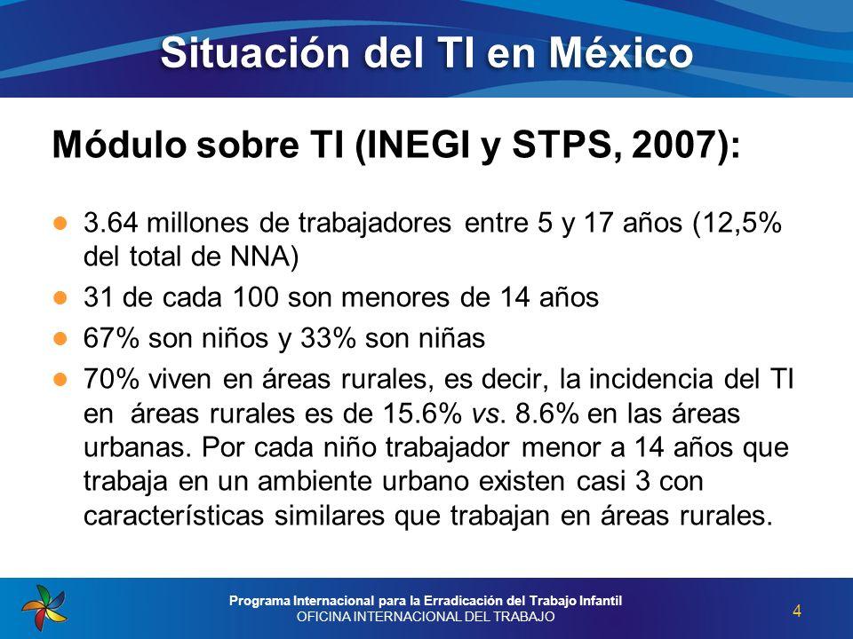 Situación del TI en México Módulo sobre TI (INEGI y STPS, 2007): 3.64 millones de trabajadores entre 5 y 17 años (12,5% del total de NNA) 31 de cada 1