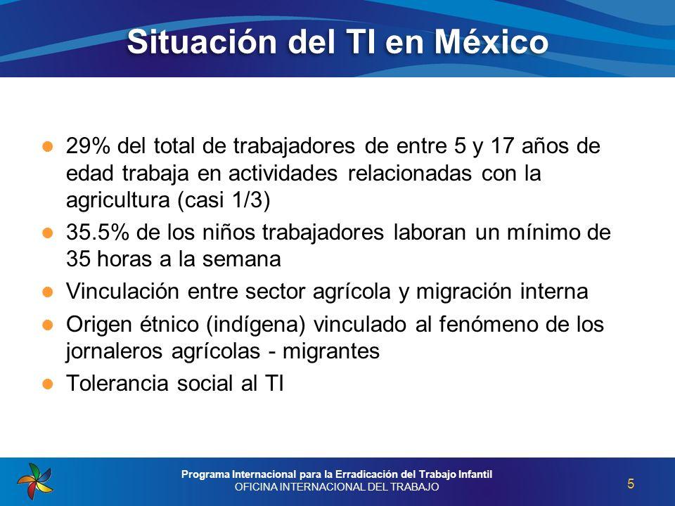 Situación del TI en México 29% del total de trabajadores de entre 5 y 17 años de edad trabaja en actividades relacionadas con la agricultura (casi 1/3