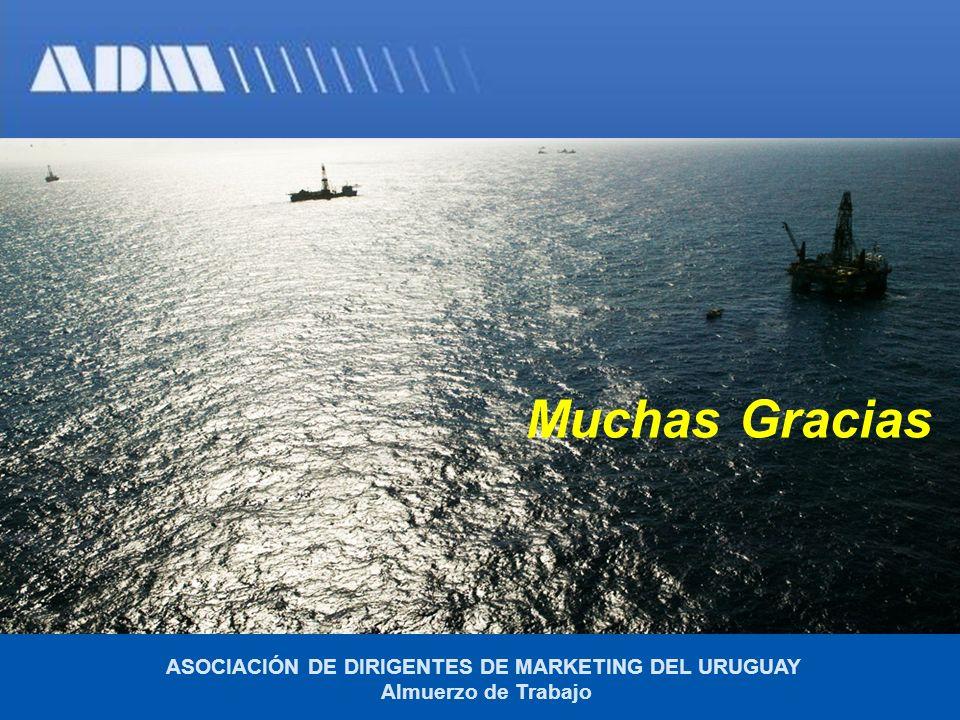 Muchas Gracias ASOCIACIÓN DE DIRIGENTES DE MARKETING DEL URUGUAY Almuerzo de Trabajo