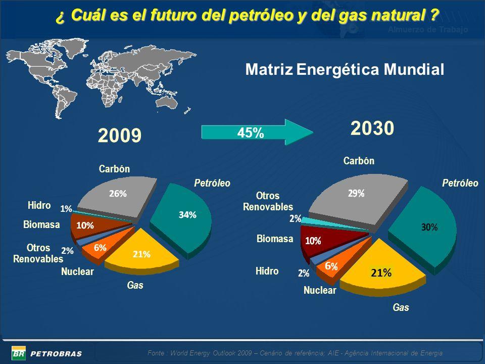 Almuerzo de Trabajo 6 45% 2030 Gas Carbón Petróleo Nuclear Biomasa Otros Renovables Hidro Nuclear Hidro Gas Biomasa Otros Renovables Carbón Petróleo 2009 ¿ Cuál es el futuro del petróleo y del gas natural .