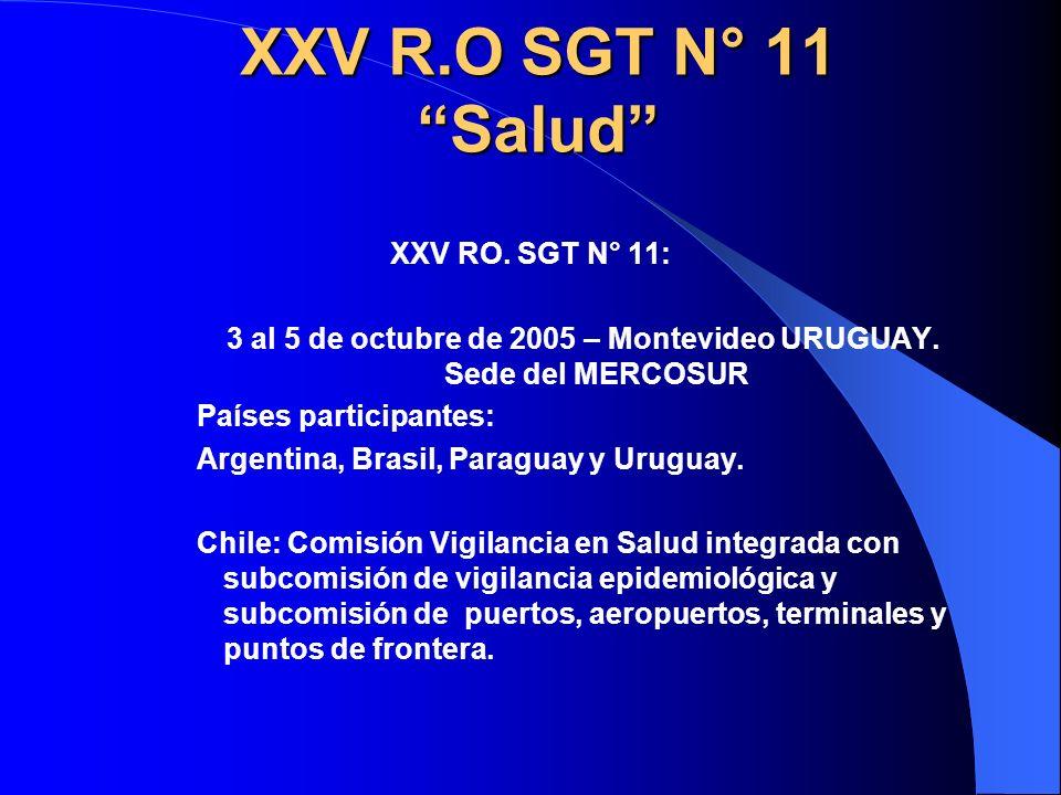 XXV R.O SGT N° 11 Salud XXV RO. SGT N° 11: 3 al 5 de octubre de 2005 – Montevideo URUGUAY. Sede del MERCOSUR Países participantes: Argentina, Brasil,