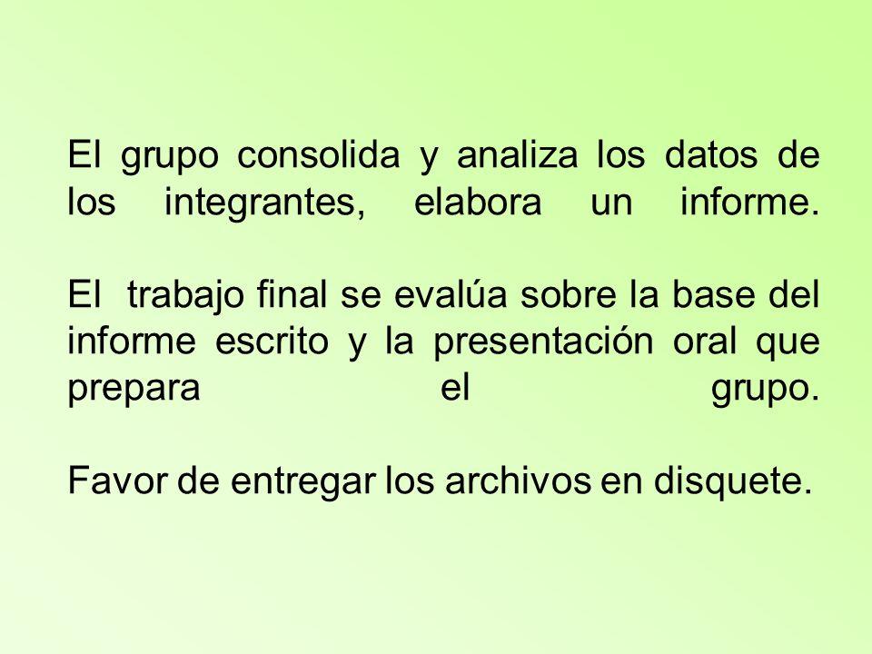 El grupo consolida y analiza los datos de los integrantes, elabora un informe.