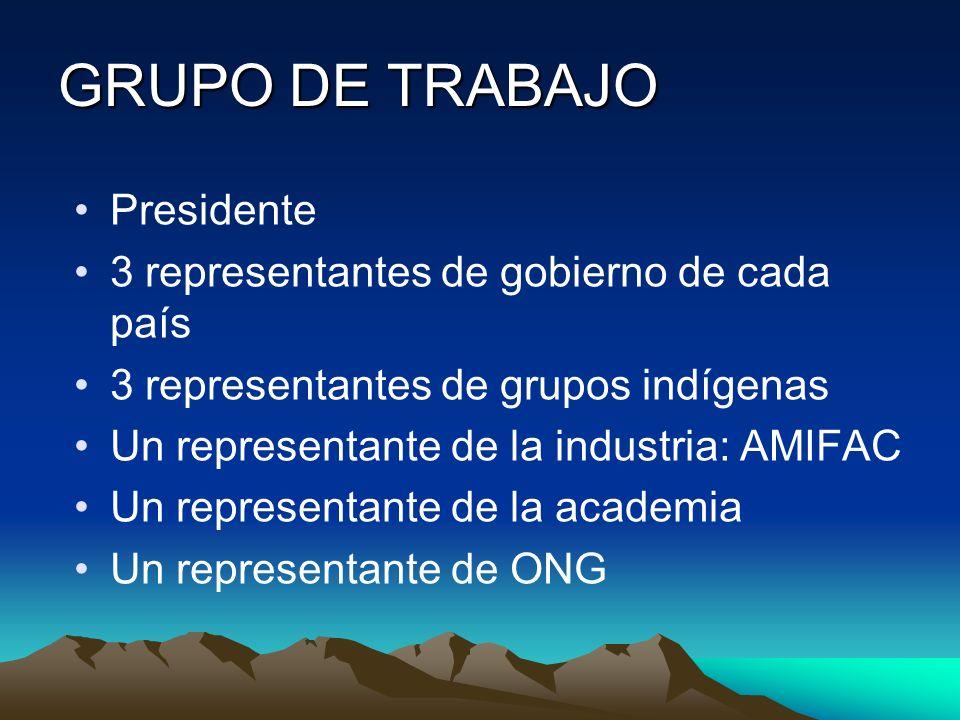 GRUPO DE TRABAJO Presidente 3 representantes de gobierno de cada país 3 representantes de grupos indígenas Un representante de la industria: AMIFAC Un
