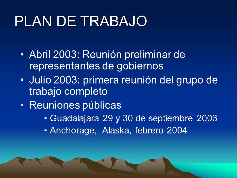 PLAN DE TRABAJO Abril 2003: Reunión preliminar de representantes de gobiernos Julio 2003: primera reunión del grupo de trabajo completo Reuniones públ