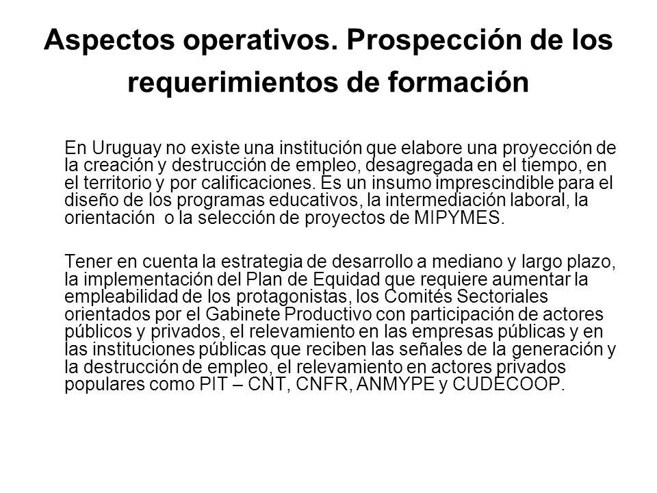 Aspectos operativos. Prospección de los requerimientos de formación En Uruguay no existe una institución que elabore una proyección de la creación y d