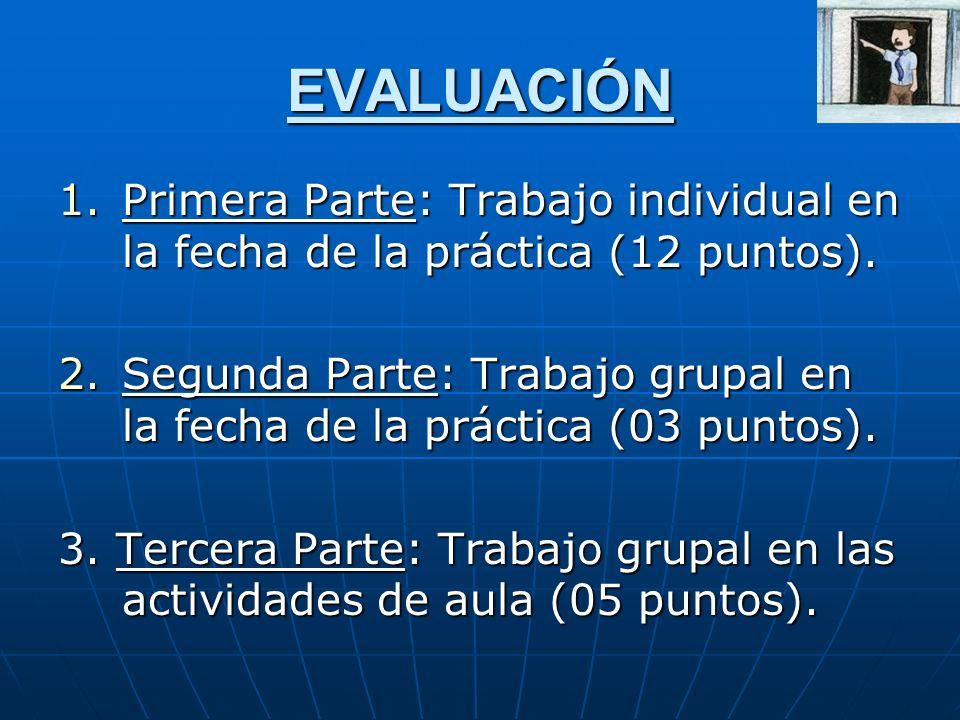 EVALUACIÓN 1.Primera Parte: Trabajo individual en la fecha de la práctica (12 puntos). 2.Segunda Parte: Trabajo grupal en la fecha de la práctica (03