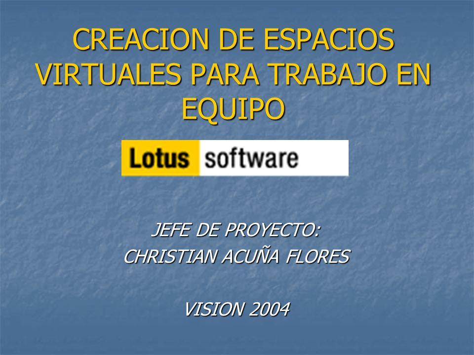 CREACION DE ESPACIOS VIRTUALES PARA TRABAJO EN EQUIPO JEFE DE PROYECTO: CHRISTIAN ACUÑA FLORES VISION 2004