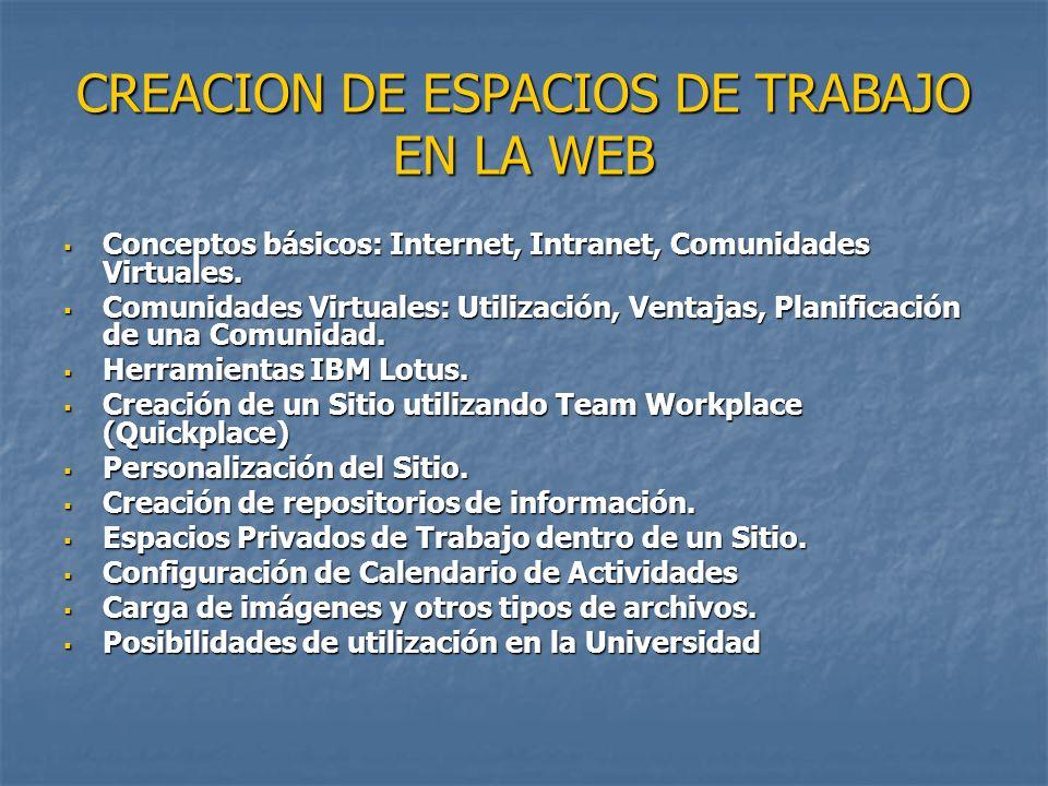 CREACION DE ESPACIOS DE TRABAJO EN LA WEB Conceptos básicos: Internet, Intranet, Comunidades Virtuales.