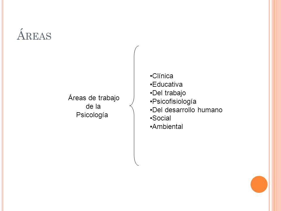 Á REAS Áreas de trabajo de la Psicología Clínica Educativa Del trabajo Psicofisiología Del desarrollo humano Social Ambiental