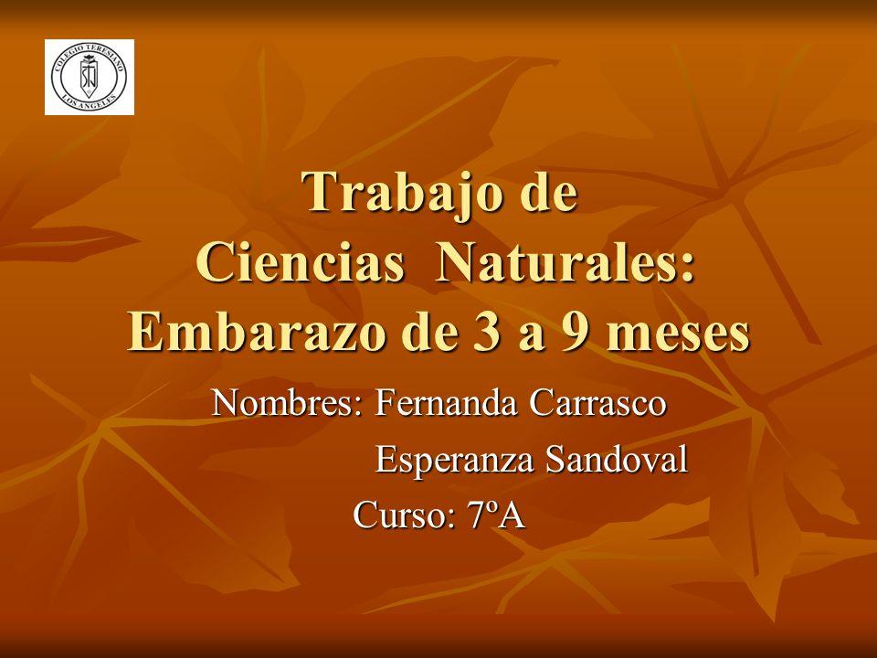 Trabajo de Ciencias Naturales: Embarazo de 3 a 9 meses Nombres: Fernanda Carrasco Esperanza Sandoval Esperanza Sandoval Curso: 7ºA
