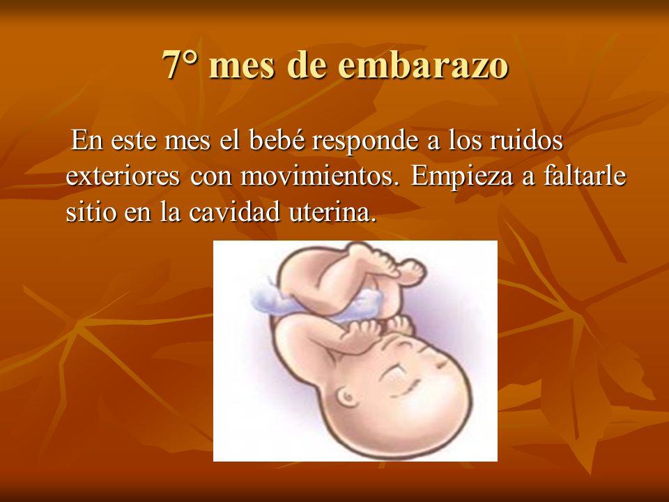 7° mes de embarazo En este mes el bebé responde a los ruidos exteriores con movimientos. Empieza a faltarle sitio en la cavidad uterina. En este mes e