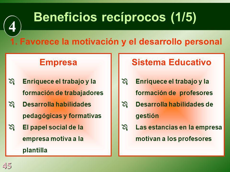 45 Empresa Enriquece el trabajo y la formación de trabajadores Desarrolla habilidades pedagógicas y formativas El papel social de la empresa motiva a