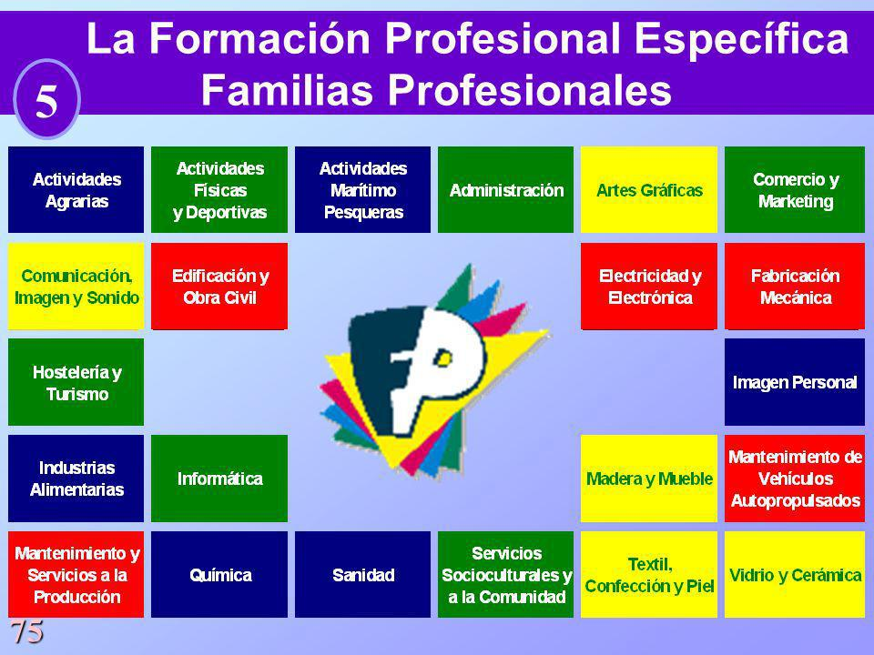 75 La Formación Profesional Específica Familias Profesionales 5