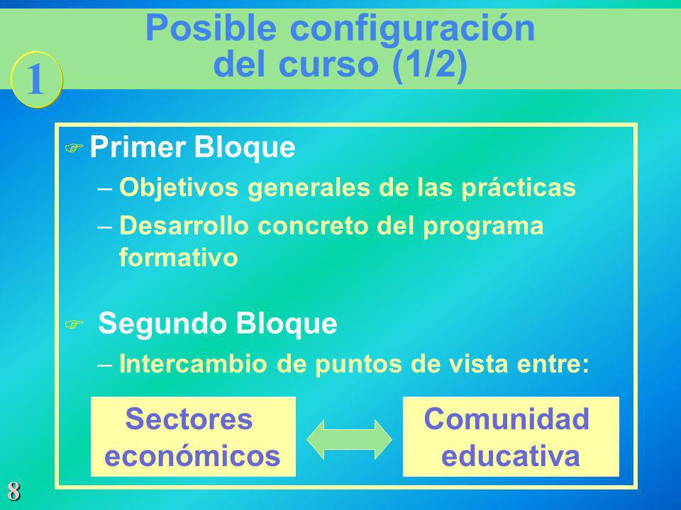 8 Posible configuración del curso (1/2) F Primer Bloque –Objetivos generales de las prácticas –Desarrollo concreto del programa formativo F Segundo Bl