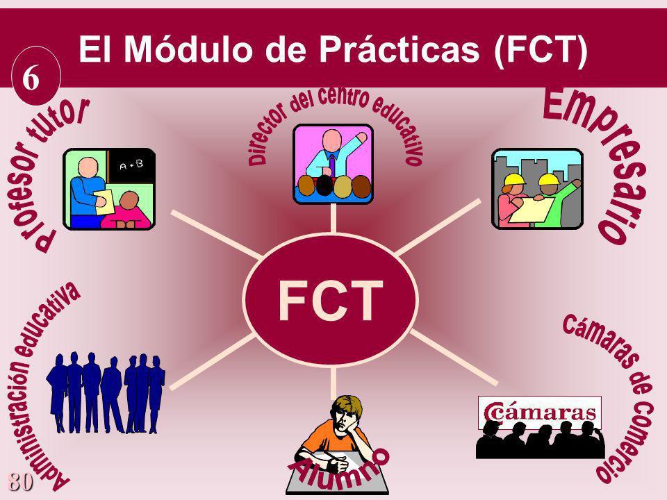 80 FCT El Módulo de Prácticas (FCT) 6