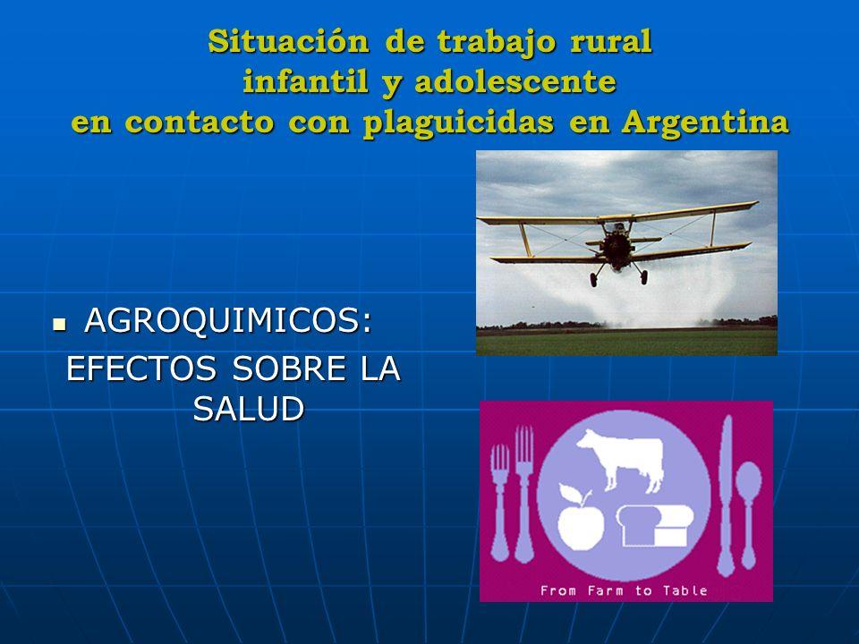 Situación de trabajo rural infantil y adolescente en contacto con plaguicidas en Argentina AGROQUIMICOS: AGROQUIMICOS: EFECTOS SOBRE LA SALUD