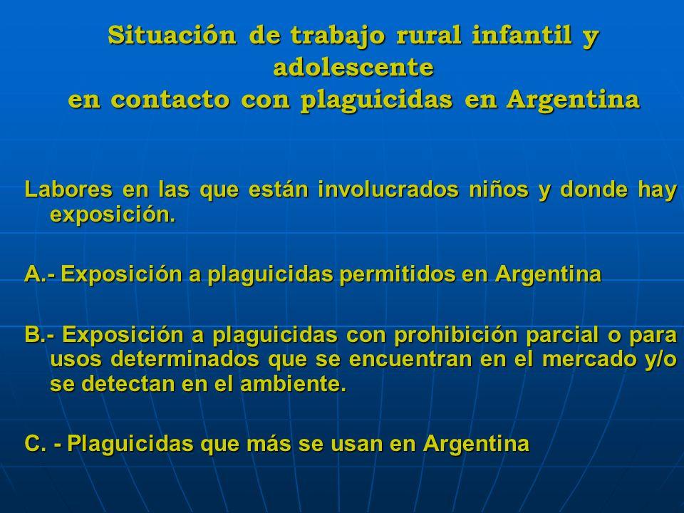 Situación de trabajo rural infantil y adolescente en contacto con plaguicidas en Argentina Labores en las que están involucrados niños y donde hay exp
