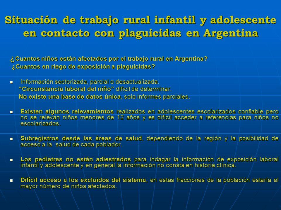 Situación de trabajo rural infantil y adolescente en contacto con plaguicidas en Argentina ¿ Cuantos niños están afectados por el trabajo rural en Arg