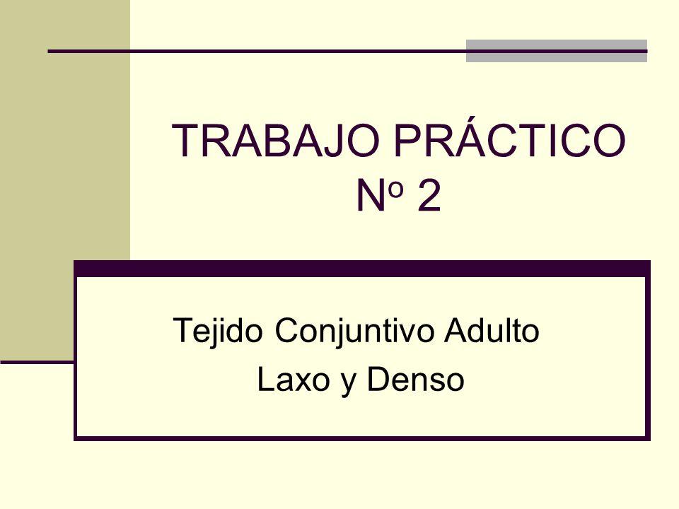 TRABAJO PRÁCTICO N o 2 Tejido Conjuntivo Adulto Laxo y Denso