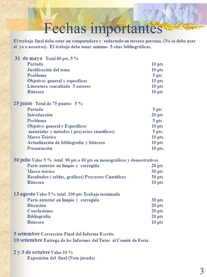 4 Formato para un trabajo escrito Partes del Trabajo Portada Índice Introducción Problema Objetivos General y Específico Marco Teórico Resultados-Discusión.
