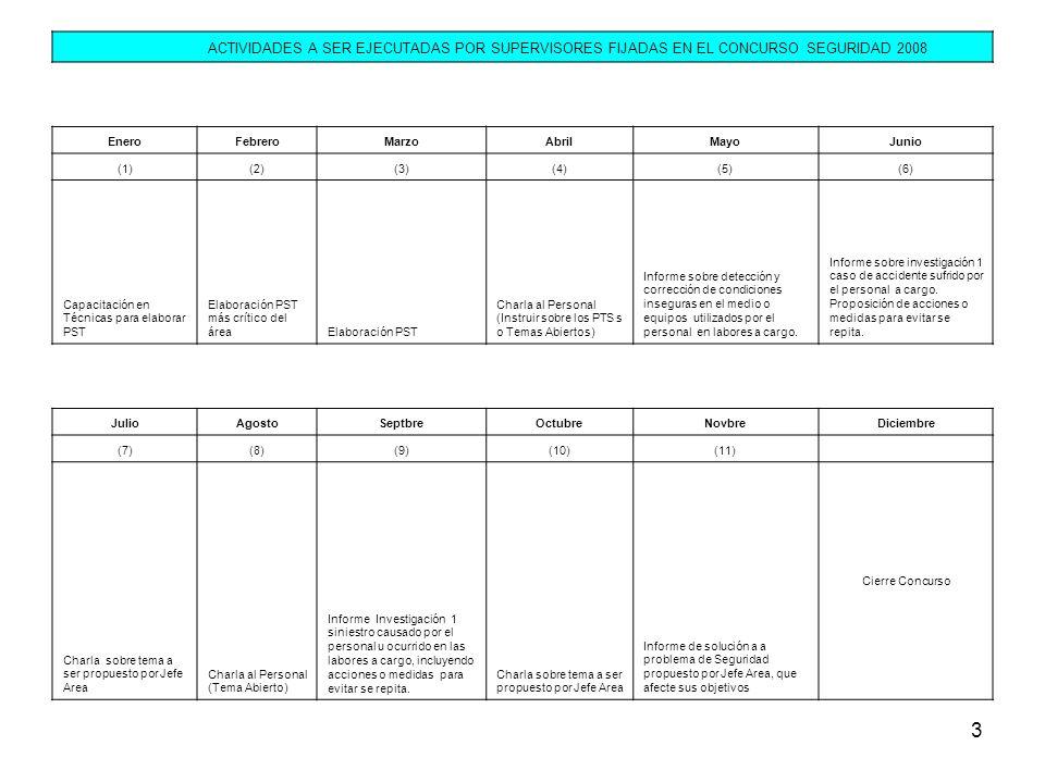 3 ACTIVIDADES A SER EJECUTADAS POR SUPERVISORES FIJADAS EN EL CONCURSO SEGURIDAD 2008 EneroFebreroMarzoAbrilMayoJunio (1)(2)(3)(4)(5)(6) Capacitación