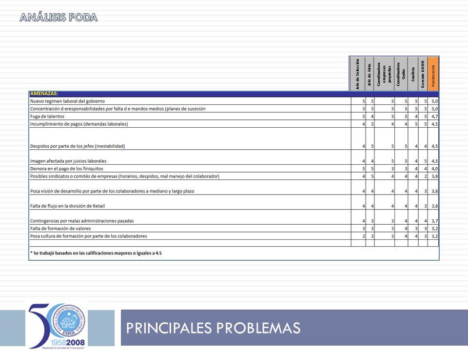 NECESIDADES DE LA EMPRESA A finales del año 2007, la Presidencia toma la decisión de contratar profesionales para implementar y fomentar el manejo responsable y equitativo de los colaboradores de la Empresa.
